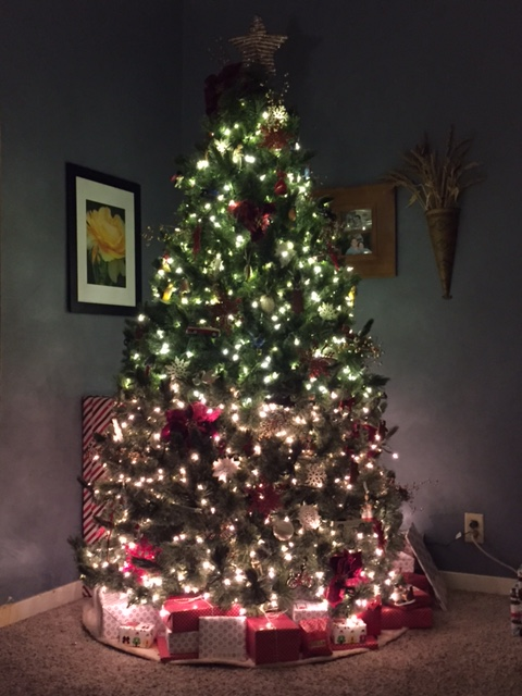 23 05 tree