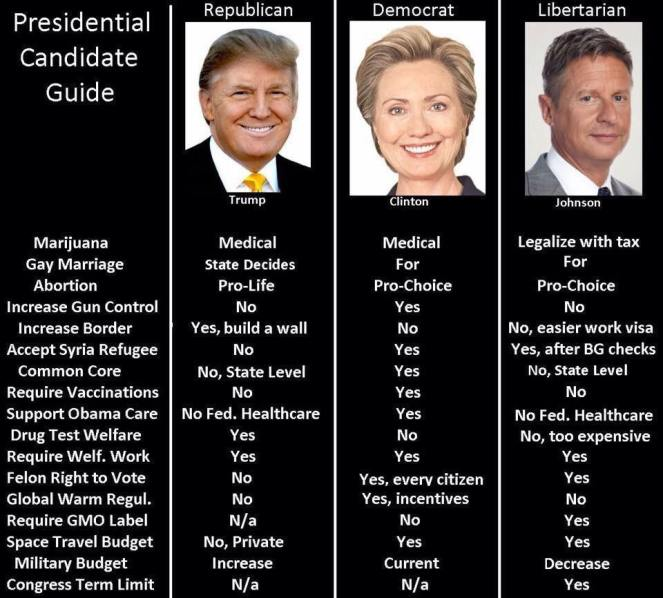 presidential-candidate-guide